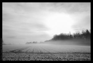 Appareil Photo Numérique - Nikon D650 – « vieux » 3,5/20mm Ais – Traitement Dxo filmpack